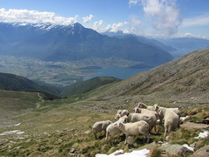 Legnone e Lago di Como